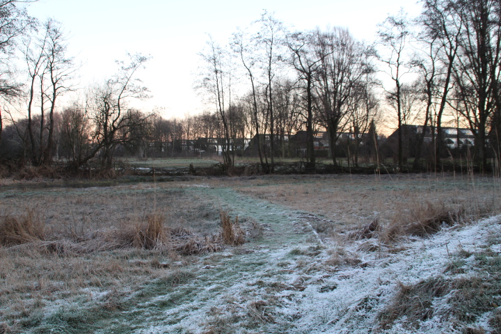 winter in de natuurtuin